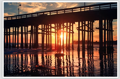 Golden Moments under the Ventura Pier